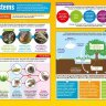 Ecosystems | Geography Posters | Gloss Paper